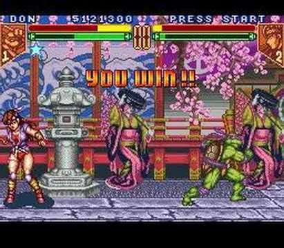 Teenage Mutant Ninja Turtles:Tournament Fighters -Don v
