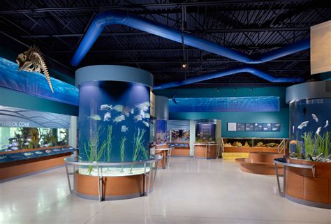 South Florida Science Center and Aquarium | Palm Beach