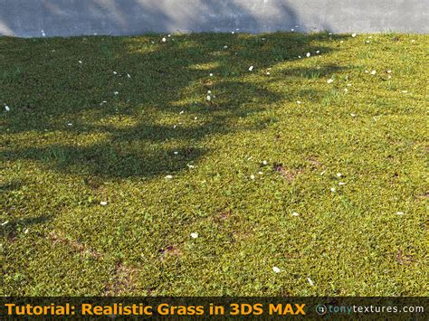 Tutorial: How to Make and Render Super Realistic 3d Grass