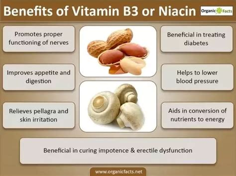 What are the health benefits of niacin? - Quora